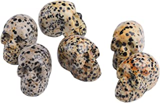 AMOYSTONE Natural Gemstone Carved Human Skull Statues Figurines Spotted Jasper 6pcs for Collector