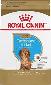 Royal Canin Dog Food for Dachshund Puppies