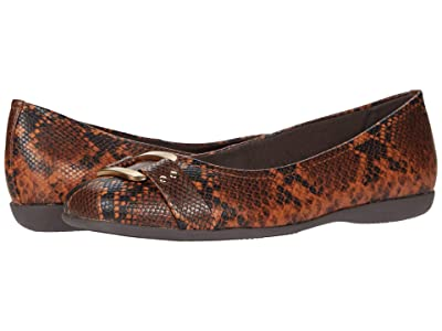 Trotters Sizzle Signature (Dark Brown Snake) Women