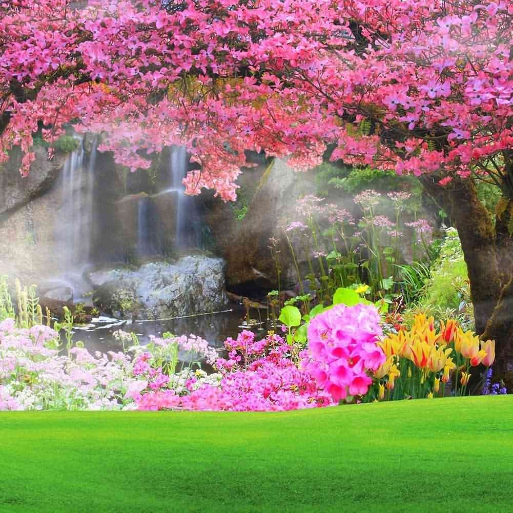 59 IN Computer Printed photography Background Backdrop 98.4 IN Flower Window Story H W