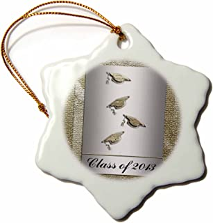 3dRose orn_43441_1 Class of 2013 Caps with Tassels Silver and Gold Snowflake Decorative Hanging Ornament, Porcelain, 3-Inch