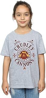 HARRY POTTER niñas Chudley Cannons Logo Camiseta 9-11 Years Gris Sport