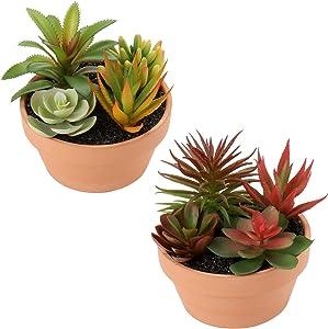 Artificial Succulent Plants, Assorted Decorative Small Faux Succulent Fake Potted Succulent Plants for Home Office Bathroom Living Room Garden Table Desk Plants Decor