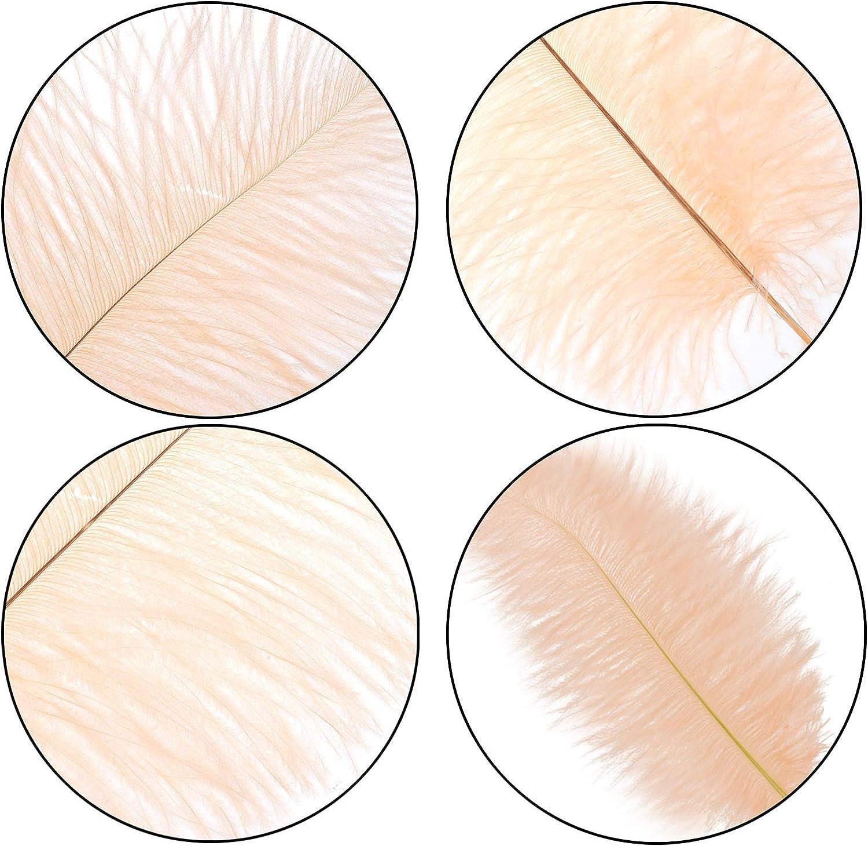 Lot de 6 plumes dautruche de 40 /à 45 cm pour d/écoration de table f/ête de mariage maison