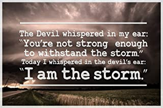 I Am The Storm Quote Motivational Cool Wall Decor Art Print Poster 12x18