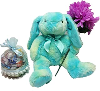 Plush 13-Inch Easter Bunny With Easter Basket of Lindt Lindor Gourmet Chocolate Truffles & Spring Floral Accent (G)