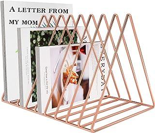 Files Folder Stand Desktop File Organizer, Copper Wire Book Shelf Magazine Rack, 9 Slot File Sorter Eye-catching Decoratio...