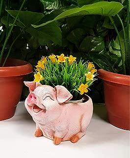 Wonderland Smiling Pig Flower Pot ( Garden Pots , Planter , Planters, Table Decor, Gifting , Garden Decor, Home Decoration)