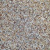 B-Creative Pea Shingle Grava Arena Acuario pecera Tanque/Estanque característica sustrato – Tamaño XF20202B (2 – 4 mm) (5 kg. x 1 Bolsa)