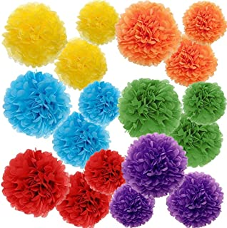 Paper Pom Poms Color Tissue Flowers Birthday Celebration Wedding Party Halloween Christmas Outdoor Decoration,18 pcs of 10...