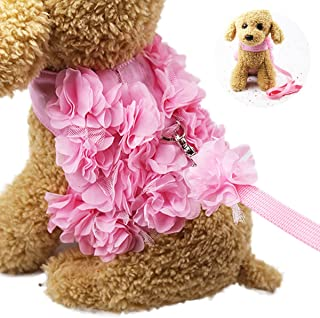 WORDERFUL Dog Flower Harness Waking Vest Harness with Pet Leash for Halloween Cat Puppy