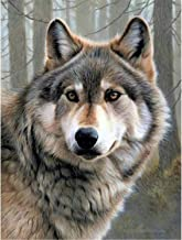 ANMUXI DIY 5D Diamond Painting Round Drills Diamond Art Embroidery Craft Animal Wolf Forest 30x40CM