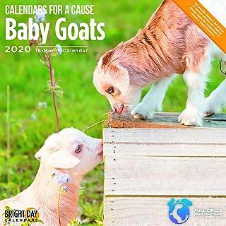 2020 Baby Goats Calendar 16 Month 12 x 12 Wall Calendar by Bright Day Calendars (Calendars for a Cause Wall Calendar)