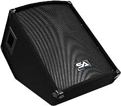 Seismic Audio - SA-12MT - Pro Audio PA/DJ 12