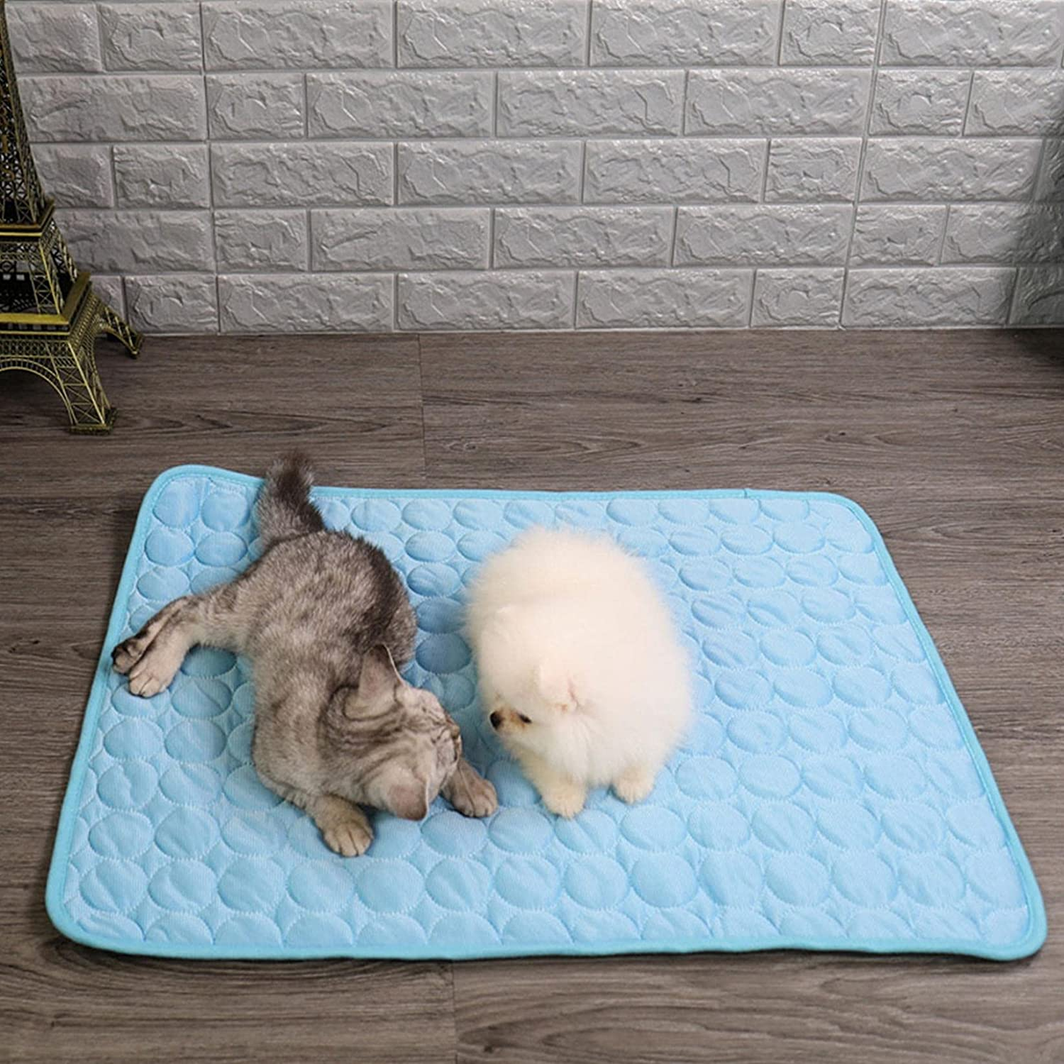 Pet Ice Cooling Pad Dog Mat 2021 autumn and winter new Pa Summer Memphis Mall Self