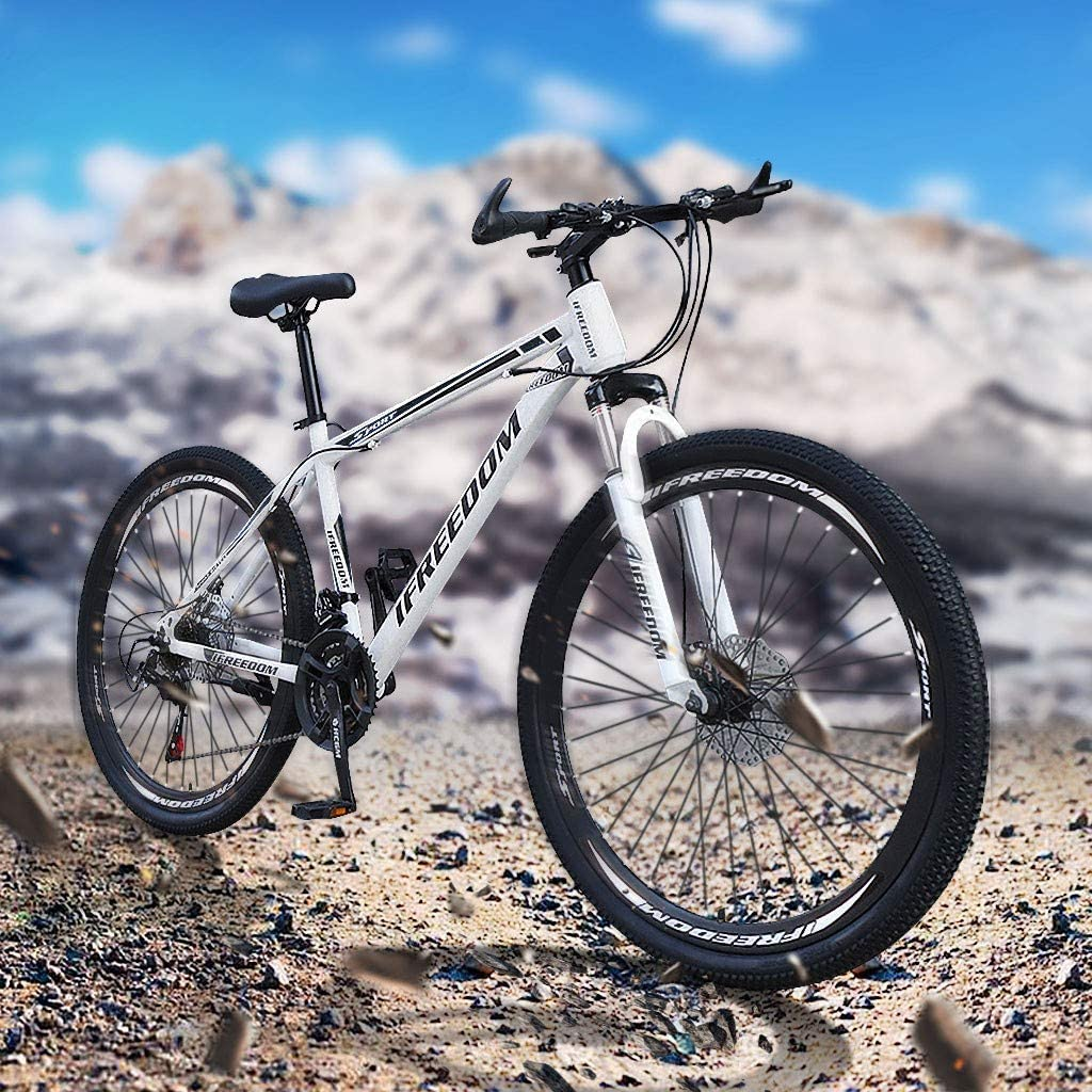 Gears Dual Disc Brakes Bike Outroad Mountain Bicycle Outroad Racing Cycling from US. Gray, 26 Inch Suitable for Adult and Teens 26 Inch 21Speed Full Suspension MTB Bikes