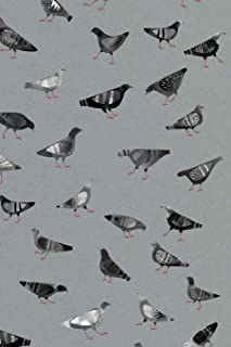 Notes: A Blank Sketchbook with Pigeons Doing Pigeon Things Cover Art