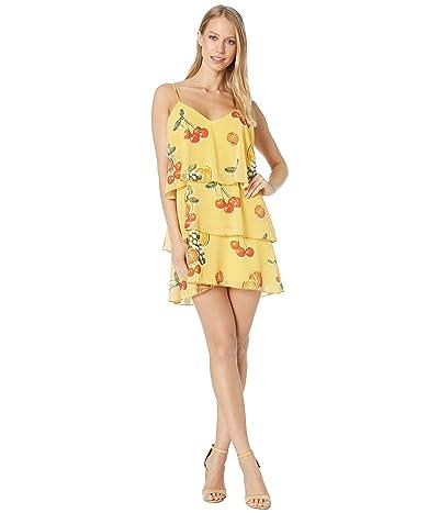 Show Me Your Mumu Suarez Ruffle Dress (Fruit Basket) Women