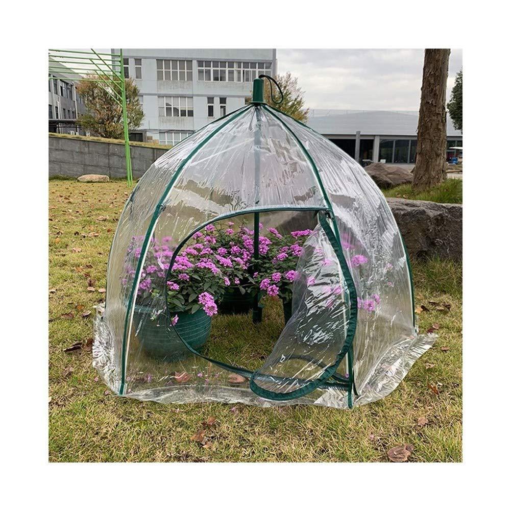 Gzhenh Invernadero Cobertizo De Aislamiento Térmico Paraguas Jardinería Impermeable Prevención De Aves Plegable Invernaderos Jardin PVC (Color : Clear-3pcs, Size : 105x78cm): Amazon.es: Hogar