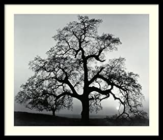 Best oak framed prints Reviews