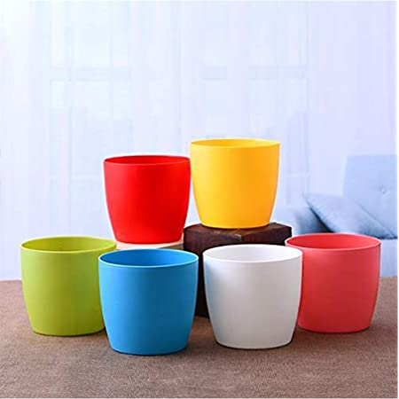 Plants Point Dream Nursery Pack of 6 Colored 4 inch Plastic Pots / Virgin Plastic / Heavy Plastic / Multicolour / Garden Needs for Live Plants