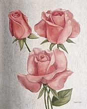 American Classic Rose by Debra Lake Art Print, 20 x 25 inches