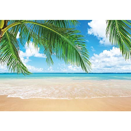 300X300CM GoHeBe 10X10FT Sea Beach Architecture Landscape Seamless Vinyl Photography Backdrop Photo Background Studio Prop PGT010D