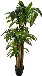 1.4 متر من النباتات الصناعية البرازيل شجرة دراكاينا للمنزل والمكتب والديكور الداخلي والخارجي