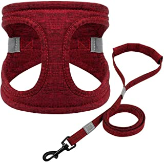 Didog Escape Proof Small Dog Harness with 5ft Leash Set,Soft Padded Vest Harness for Puppy and Cat Walking,Easy to Put on & Take Off