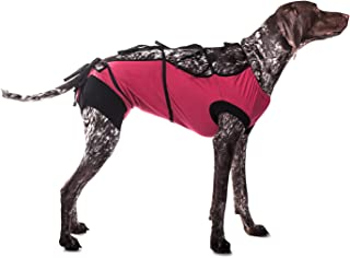 Best t shirt for neutered dog Reviews
