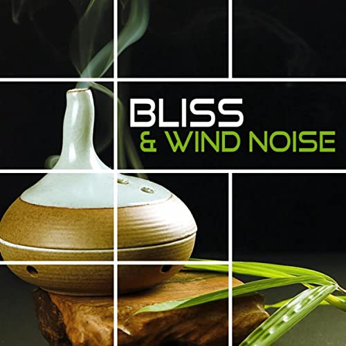 Bliss & Wind Noise - Music for Relaxation & Meditation, Sleep Song