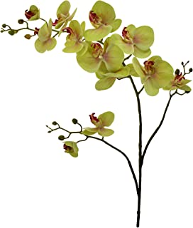 YATAI 6 Pcs Artificial Orchids Flowers for Multiple Occasions - Green