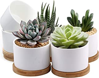 Best cute mini flower pots Reviews