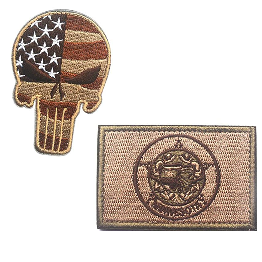 Embroidery USA MINNESOTA State Flag and Punisher Tactical patches (3