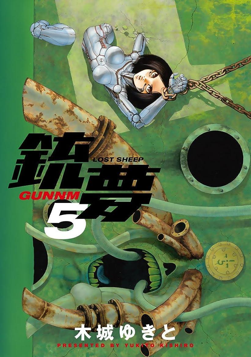 プレビスサイト梨シリアル銃夢(5)
