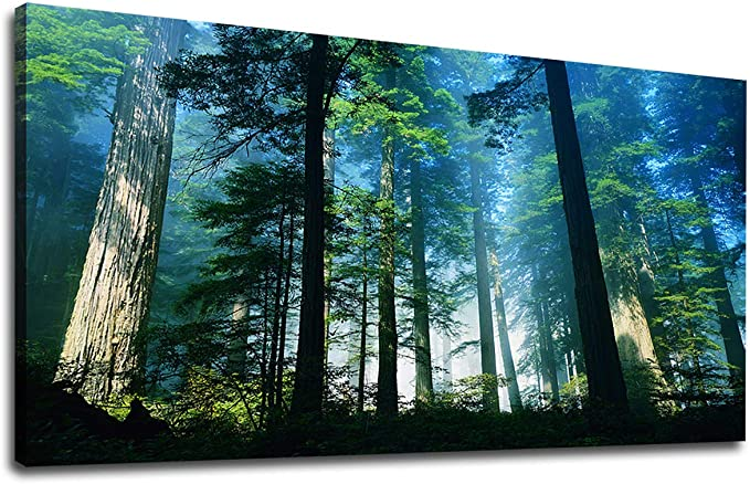Amazon Com Wall Art Green Blue Forest Canvas Art Bedroom Wall Decor Big Trees Foggy Woods Morning Sun Shine Large Nature Picture Artwork Living Room Wall Decor For Home Office Decorations 24 X