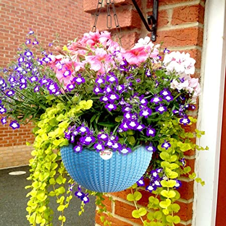 Kraft Seeds Hanging Planter Euro Elegance Round Solid Look and Feel Pots for Home & Balcony Garden 17.5cm Diameter Blue