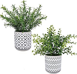 2 Pack Small Potted Eucalyptus Plant Artificial Plants Green Boxwood Rosemary Greenery in Modern Concrete Plant Pots