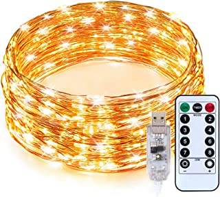 TaoTronics LED String Lights,Christmas Decorations Lights 33ft 100 LEDs USB Powered Warm White Dimmable Copper Wire String Lights,8 Lighting Modes,15 brightness levels, Remote Control, IP65 Bendable