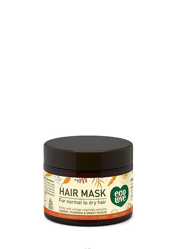 初期のミッション罪人Hair mask for normal to dry hair 11.8 fl.oz. 350 ml