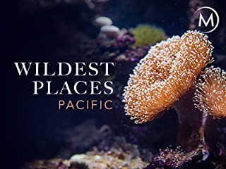 Wildest Places