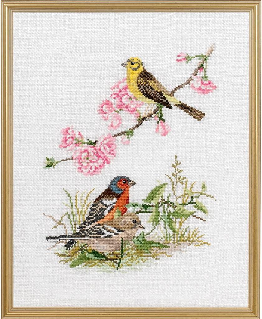Eva Rose Stand Brand Cheap Sale Venue Cross Stitch Set Birds II x High material 31 Counted 39 Pattern