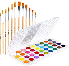 Fundamentals Watercolor Artist Set, 36-Color Ohuhu Watercolor Pan Set Water Color Set, Bonus a Variety of 12 Paintbrushes ...