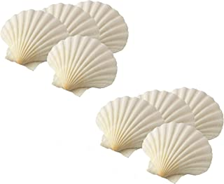 HIC Harold Import Co. 45678/2 Maine Man Baking Shells, 4 Inch, Set of 8, Natural Seashell