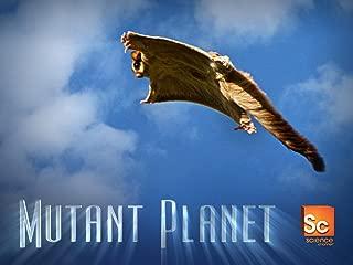 mutant planet new zealand