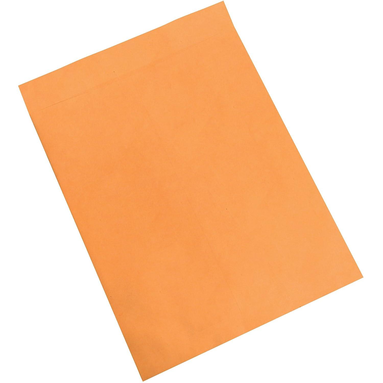 Jumbo Envelopes 17