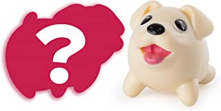 Chubby Puppies & Friends (Golden Retriever + Mystery)