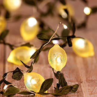 Impress Life Home Decoration String Lights with 40 LED, 20 3D Lemon, Battery Operated Warm Twinkle Christmas Fairy Lights ...