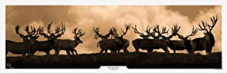 Best sepia deer print Reviews