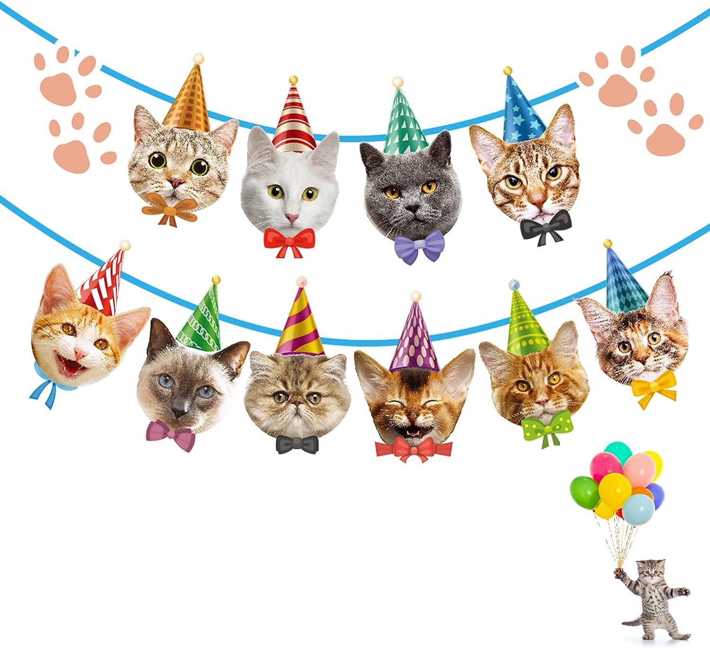 Cat Birthday Banner Not Need DIY Cat Birthday Decorations Cat Ga